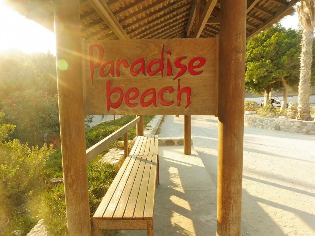 paradise beach- sistersm (20)