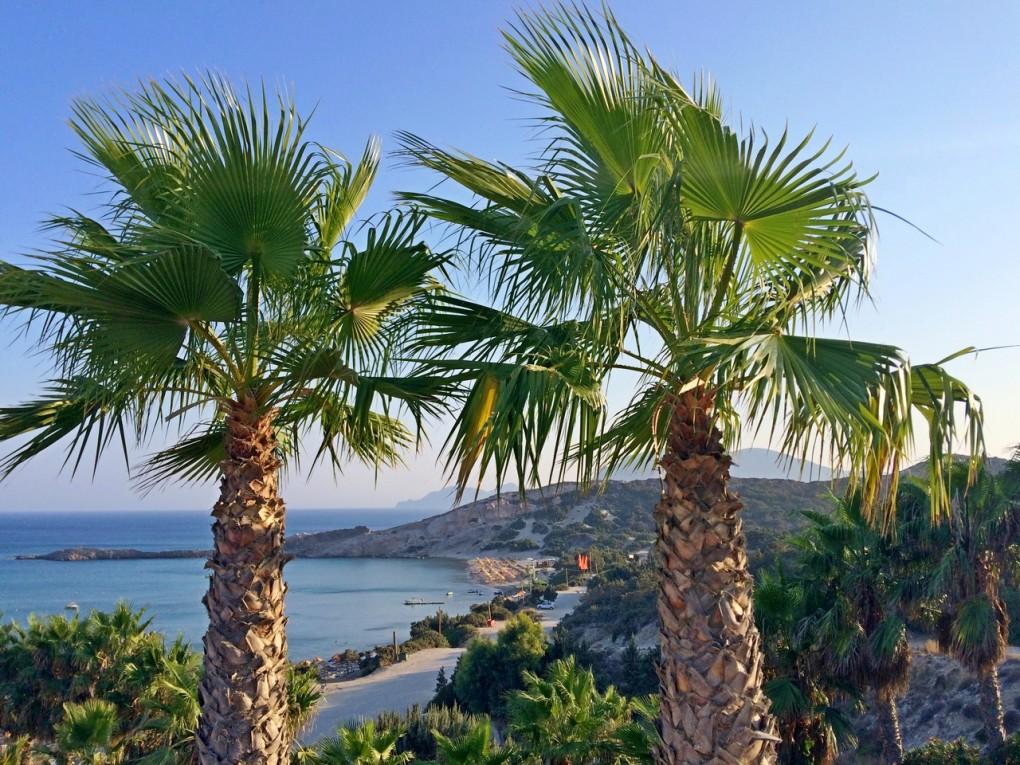 paradise beach- sistersm (8)
